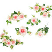 Graden Roses Poster