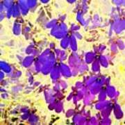Violet Moths Poster