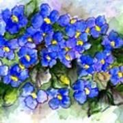 Violets Of Blue Poster