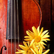 Violin With Daises  Poster