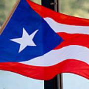 Viva Puerto Rico Poster