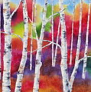 Vivid Autumn Poster