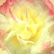 Voice Of The Heart A Rose Portrait Poster
