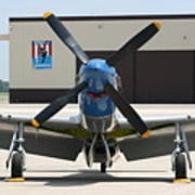 Wafb 09 P51 Mustang 2 - Darling Of The Sky Poster