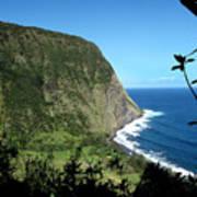 Waimanu Valley On Hawaii Poster
