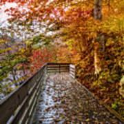 Walk Into Autumn Poster