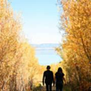 Walk To Mono Lake Poster