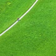 Walking Footpath In A Green Field Poster
