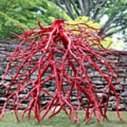 Walking Roots Sculpture 2 Poster