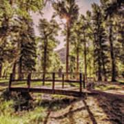 Wallowa Lake Foot Bridge Poster