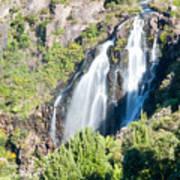 Waratah Falls Tasmania Poster