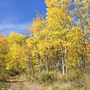 Wasatch Fall Poster