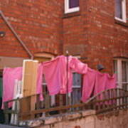 Wash Day Pinks Poster