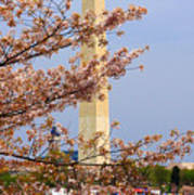 Washinton Monument In Spring Poster