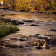Washoe Park In Autumn Poster