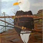 Watchful Eagle Poster