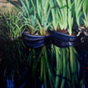 Water Garden Serie-H Poster