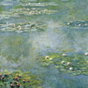 Water Lilies 21 Poster
