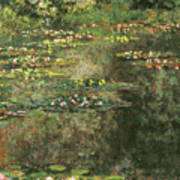 Water Lilies 4 Poster