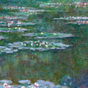 Water Lilies 5 Poster