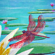 Water Lilies And Dragonfly Poster