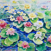 Water Lilies Poster