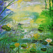 Water Lily Pond 1 Poster
