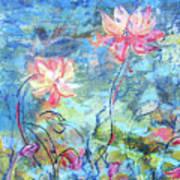 Water Lotus Poster