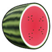Water Melon Outlined Poster