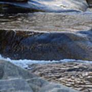 Water Ouzel, Middle Fork Kaweah River, Sequioa National Park Poster