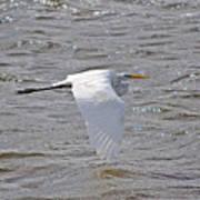Water Skimming Poster