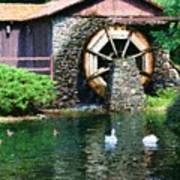 Water Wheel Duck Pond Poster