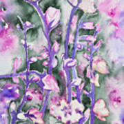 Watercolor - Cherry Blossoms Poster