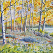 Watercolor - Colorado Autumn Forest And Landscape Poster