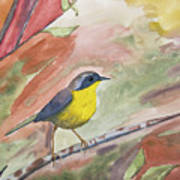 Watercolor - Common Yellowthroat Poster