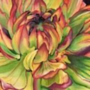Watercolor Dahlia Poster