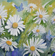Watercolor - Daisies And Common Blue Butterflies Poster