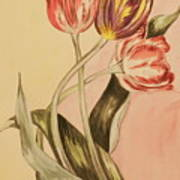 Watercolor Flowers Poster