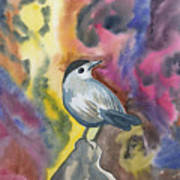 Watercolor - Gray Catbird Poster