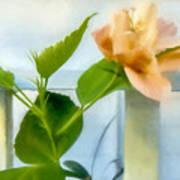 Watercolor Hibiscus Poster