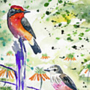 Watercolor - Vermilion Flycatcher Pair In Quito Poster