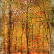 Watercolour Painting Of Vibrant Autumn Fall Forest Landscape Ima Poster