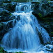 Waterfall At Finch Arboretum Poster