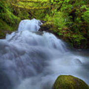 Waterfall At Shepperds Dell Falls Poster