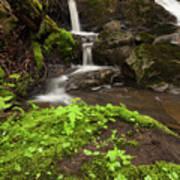 Waterfall Oasis  Poster