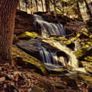 Waterfall Through The Trees Poster