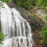 Waterfall With Green Leaves Poster