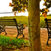Waterfront Park Bench Poster by Lori Kesten