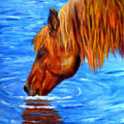 Watering Hole Horse Painting Poster