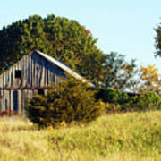 Weathered Barn In Fall Poster